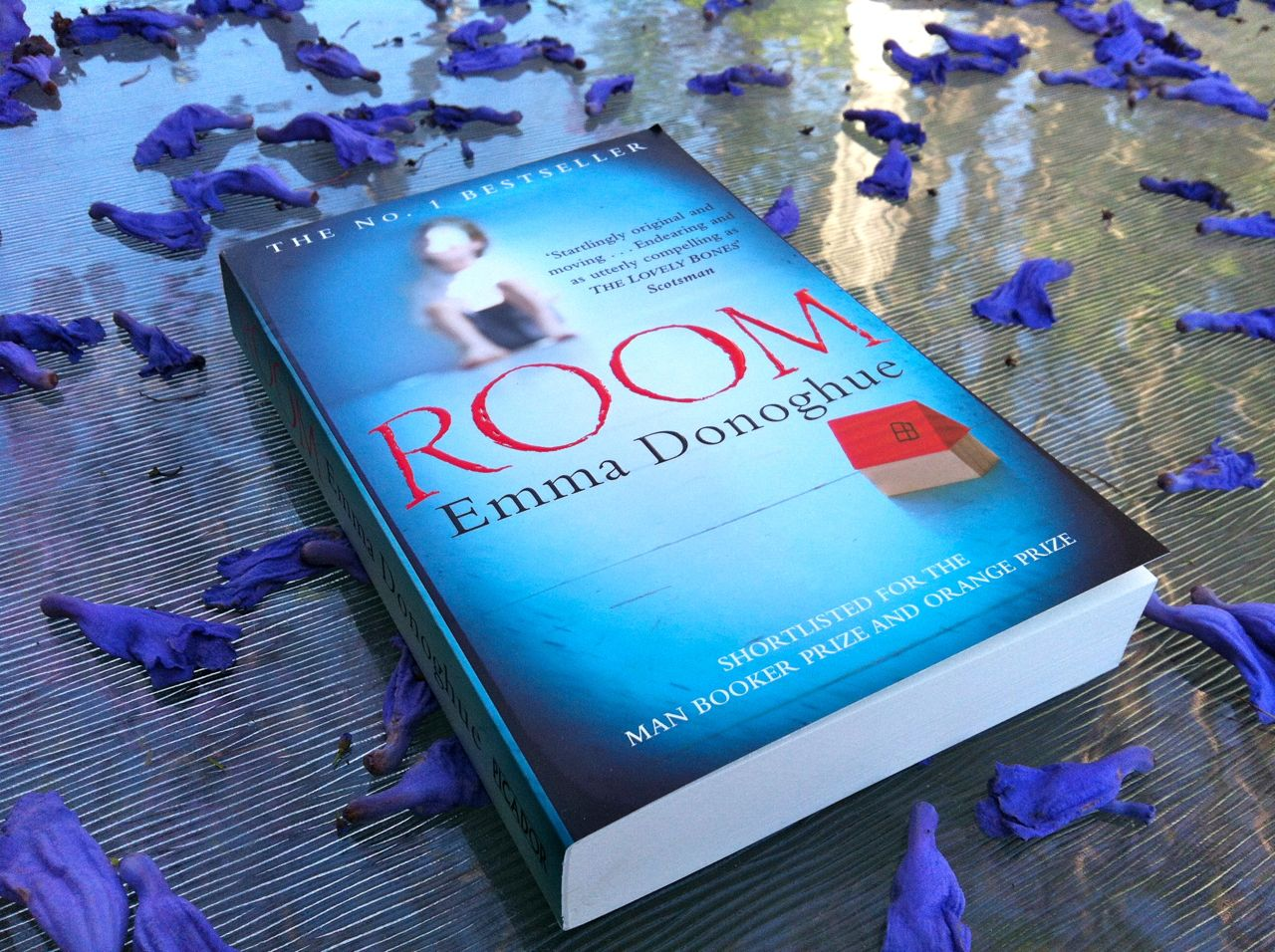 Download Book Room Emma Donoghue