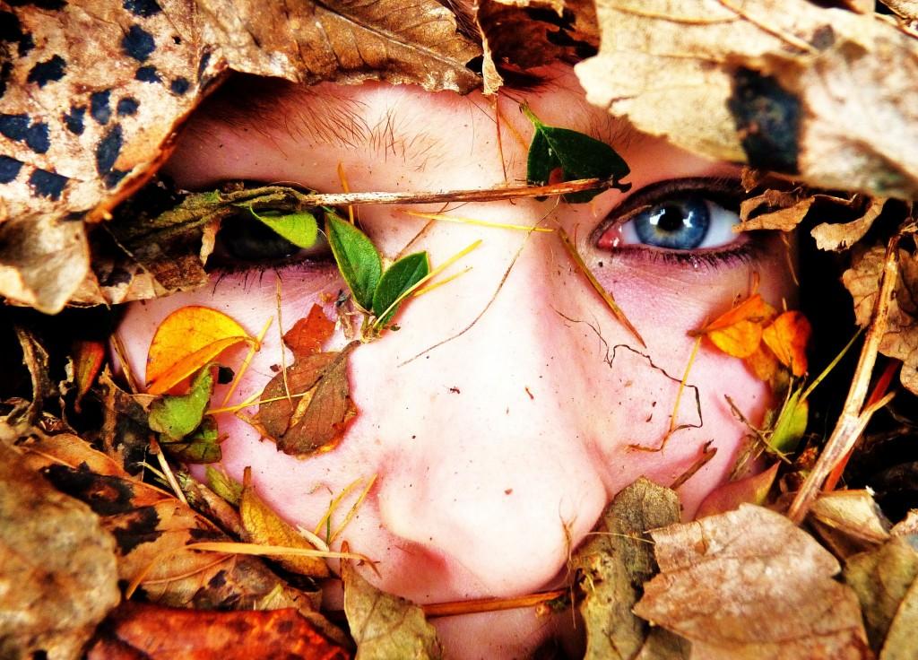 sleep anywhere_Close-up_leaves