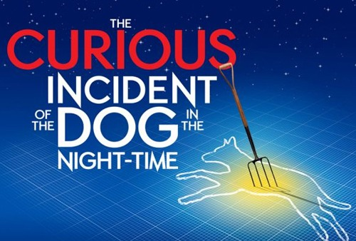 the curious incident of the dog in the night time essay Abstract this article analyzes mark haddon's 2003 novel, the curious incident  of the dog in the night-time, using a combination of disability studies and.