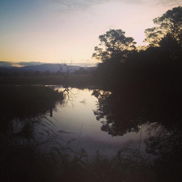 The Panboola wetlands and waterbird sanctuary at Pambula. Image Credit: Kate Liston-Mills.