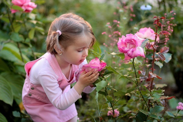 Remember that scent is one of the most powerful triggers of memory and emotions. Image via Pixabay